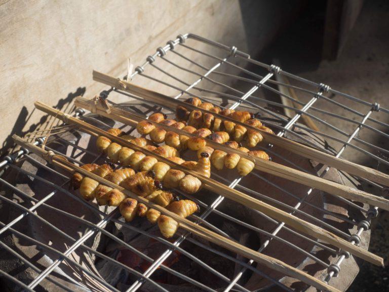 ラオス中部における亜鉛サプリメンテーションの評価論文(からの昆虫食の栄養の話)